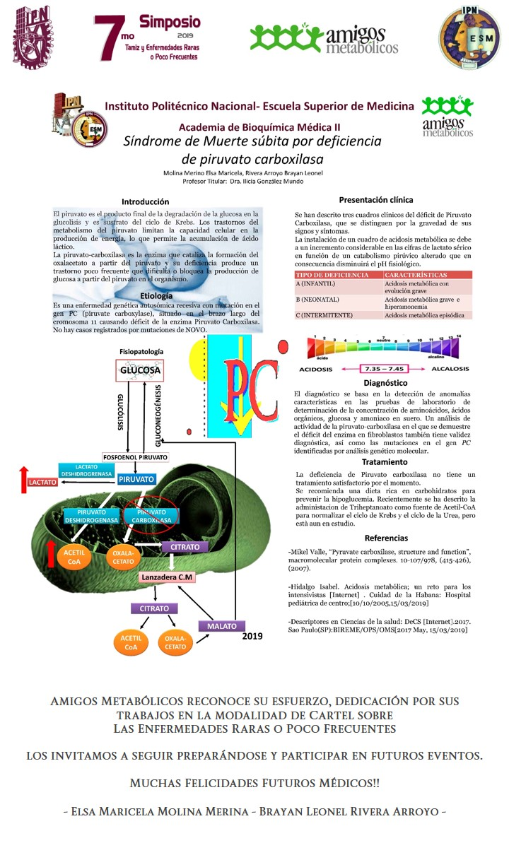 Cartel-ESM-IPN-3